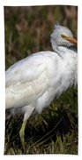Cattle Egret  Bath Towel