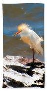 Cattle Egret In Breeding Plumage Bath Towel