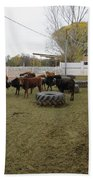 Cattle Bath Towel