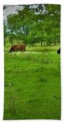 Cattle Grazing In A Lush Pasture Bath Towel