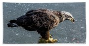 Cautious Eagle Bath Towel