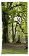 Cemetery  Trees 1 Bath Towel