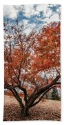 Changing Of Seasons Hand Towel