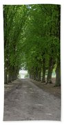 Chantilly France Street Scenes Bath Towel