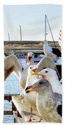 Chatty Seagull Birds Bath Towel