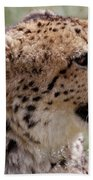 Cheetah No. 2  Bath Towel