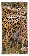 Cheetah In The Grass Bath Towel