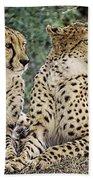 Cheetah Pair Bath Towel
