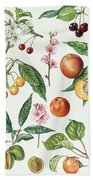Cherries And Other Fruit-bearing Trees  Bath Towel