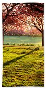 Cherry Blossom In A Park At Dawn Bath Towel