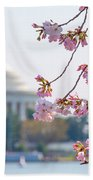 Cherry Blossoms And Jefferson Memorial Bath Towel