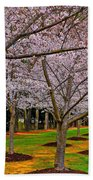 Cherry Blossoms At The Beach Bath Towel