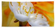 Cherry Flower In The Spring, In Profile Bath Towel