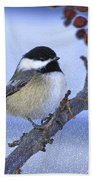 Chickadee With Craquelure Bath Towel