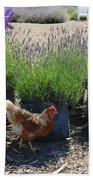 Chicken With Lavender  Bath Towel