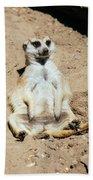 Chilling Meerkat Bath Towel