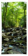Chimney Tops Trail Bath Towel