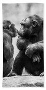 Chimpanzee Pair Bath Towel