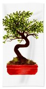 Chinese Elm Bonsai Tree Bath Towel