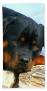 Chiron The Rottweiler  Hand Towel