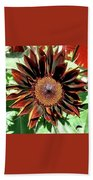 Chocolate Sunflower Hand Towel