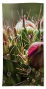 Cholla With Wasp Bath Towel
