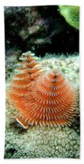 Christmas Tree Worm Bath Towel