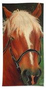 Cinnamon The Horse Bath Towel