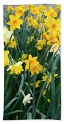 Circle Of Daffodils Bath Towel