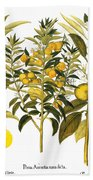 Citron And Orange, 1613 Bath Towel