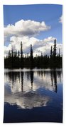 Clearwater Reflections Bath Towel