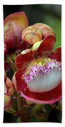 Close-up Macro Of Flower And Fruit Of Cannonball Tree Bath Towel