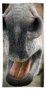 Close-up Of A Donkey's Mouth Bath Towel