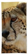Closeup Of Cheetah Bath Towel