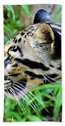 Clouded Leopard In The Grass Bath Towel