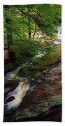 Cloughleagh Wood, Kilbride, Ireland Bath Towel