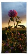 Clover At Sunset Bath Towel by Viviana Nadowski