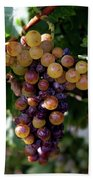 Cluster Of Ripe Grapes Bath Towel