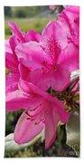 Coast Rhododendran- Washington State Flower Bath Towel