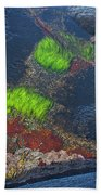 Coastal Floor At Low Tide Bath Towel