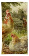 Cochin China Fowls Bath Towel