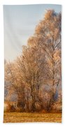 Cold Winter Evening In The Valley Bath Towel