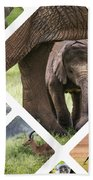 Collage Of Animals From Tanzania Bath Towel