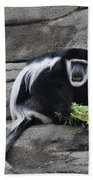 Colobus Monkey Bath Towel