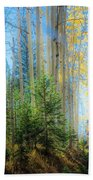 Colorado Aspens Bath Towel