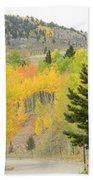 Colorado Colors Bath Towel