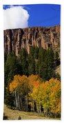 Colorado Fall 4 Bath Towel
