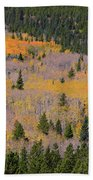 Colorado Rocky Mountains Autumn Colors Bath Towel