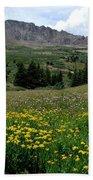 Colorado Wildflower Spectrum Bath Towel