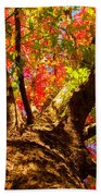 Colorful Autumn Abstract Bath Towel